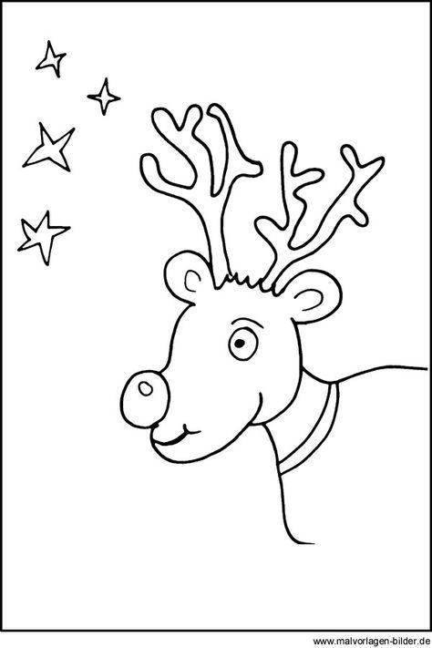 Rentier - Malvorlage und Ausmalbild zu Weihnachten