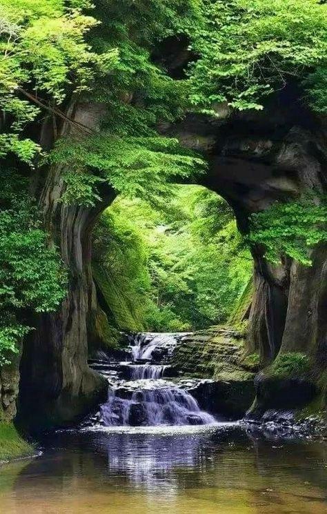My inner landscape - yellowrose543: Nature