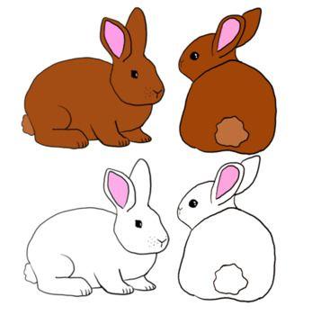 Spring adorable. Bunny rabbit clip art