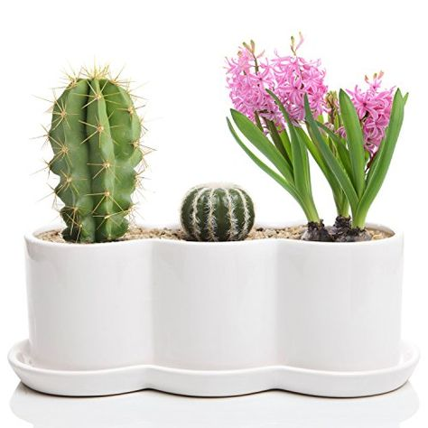 3pack ESKTOP WEEDING DECORATIVE BUCKETS FLOWER PLANT DISPLAY POT