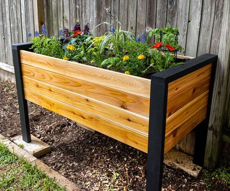 How to Make a DIY Raised Planter Box : 14 Steps (with Pictures) - Instructables Planter Box Plans, Raised Planter Boxes, Cedar Planter Box, Garden Planter Boxes, Succulent Planter Diy, Patio Planters, Wooden Planters, Planter Ideas, Concrete Planters