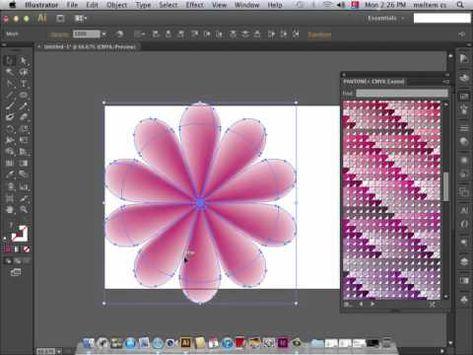 Adobe Illustrator (Mesh Tool -Çiçek Yapımı)