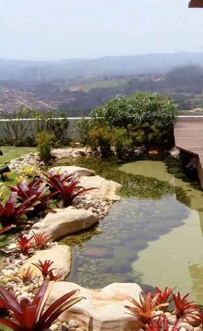 16 Idees D Amenagement De Bassin D Eau Au Jardin