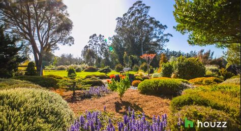 A California Dream Garden Brings Healing and Wholeness
