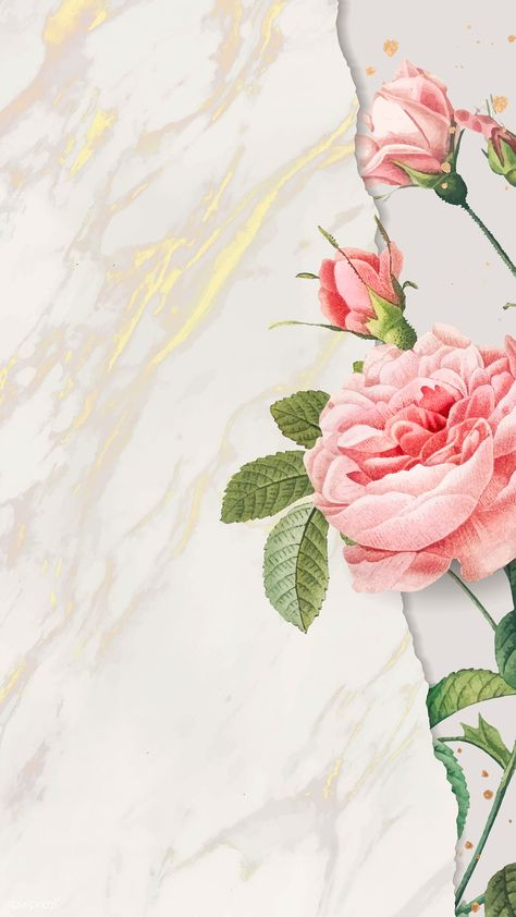 Blank pink rose frame vector | premium image by rawpixel.com / nunny