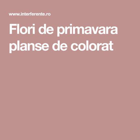 Flori De Primavara Planse De Colorat Flori De Primavara