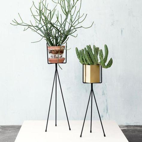 Tri pod plant stand