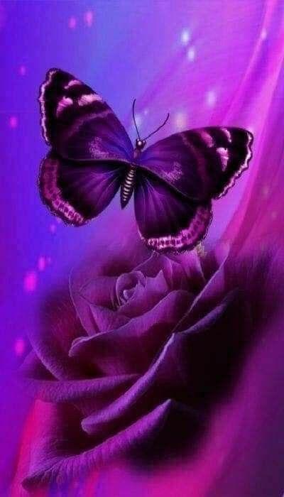Pin By Joyce Brown On Lavender Butterfly Wallpaper Backgrounds Purple Butterfly Wallpaper Purple Wallpaper