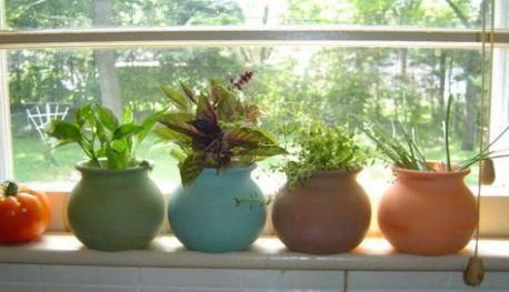 Trendy Kitchen Window Sill Plants Flower Pots 33 Ideas Small Herb Gardens Planting Flowers Windowsill Garden