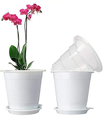 Amazon Com Mkono 2pcs 4 Inches Orchid Pots With Holes And Mesh 2 Inner And 2 Outer Planters Garden Outdoor White Flower Pot Orchid Pot