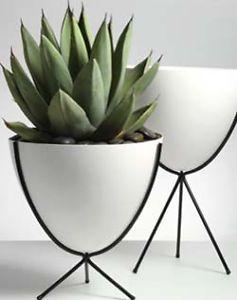 Stunning Modern Indoor Plants Gallery - Interior Design Ideas ...