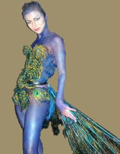 google image result for httpcontinentalfeatherscomimagesexotic peacock costumejpg 2012 halloween ideas pinterest peacocks costumes and - Exotic Halloween Costume