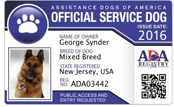 Instant Service Dog Registration Service Dog Registry Service Dog Registration Service Dogs Dogs