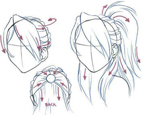 Hair Drawing Reference Side View Hair Drawing Reference Drawing Hair Reference Side View In 2020 Ponytail Drawing How To Draw Hair How To Draw Anime Hair