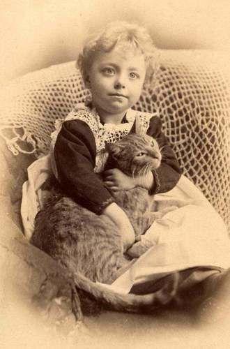 1800s Little Girl Holding Her Kitty Cat
