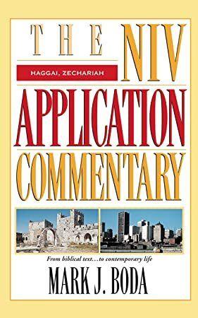 13b22ab4e5d61cf109a2094884444f6a - Niv Application Commentary Psalms Volume 2