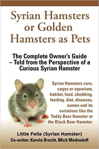 Syrian Hamsters Or Golden Hamster Hamsters As Pets Syrian