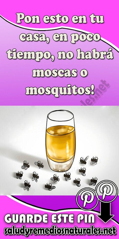 120 Ideas De Repelentes Caseros Repelente Casero Repelente Natural
