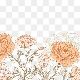 Hand Painted Flowers Vector Orange Flowers Flowering Png Transparent Clipart Image And Psd File For Free Download Line Art Flowers Flower Background Wallpaper Flower Graphic