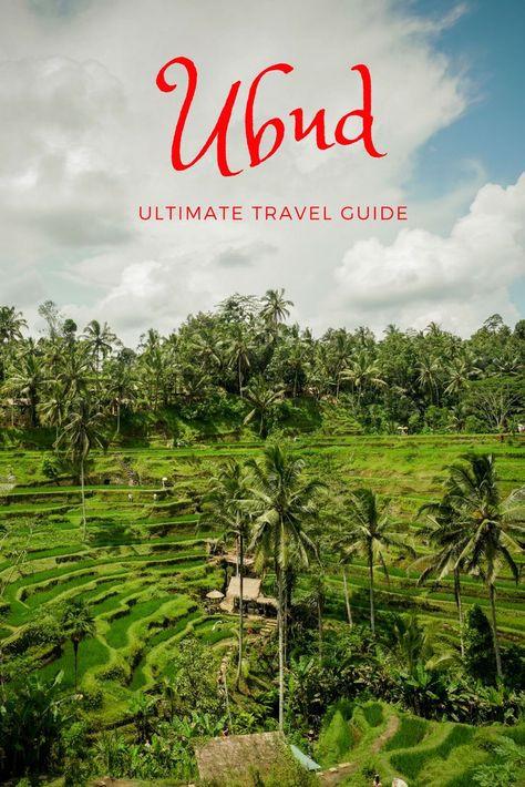 The awesome things to do in Ubud make it essential for any itinerary of Bali, Indonesia. It's a paradise for nature lovers –you can hike Batur volcano, visit the monkey forest, swim in waterfalls and see the Tegalalang rice fields. Although it's not near beaches like Seminyak, Kuta and Canggu, there's culture thanks to temples, markets and Ubud Palace. Find out the beautiful places for things to do, restaurant advice, budget tips + more with this Ubud travel guide #bali #ubud #travel