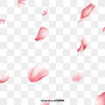 Vector De Flor Decoracao Flores Garland Cor De Rosa Imagem Png E Psd Para Download Gratuito In 2021 Cherry Blossom Art Cherry Blossom Watercolor Cherry Blossom Petals