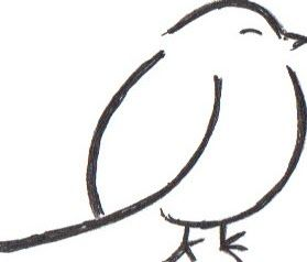 fat bird designs