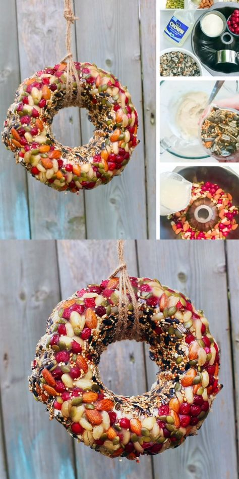 Looking for an easy Bird Feeder Kids Can Make? A beautiful Bird Feeder Wreath to decorate your yard and attract the birds. Perfect for a bird unit study