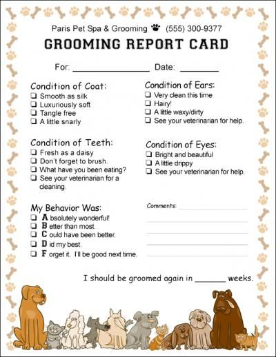 Doggy Report Card  Future Kennels    Pet Care Dog And