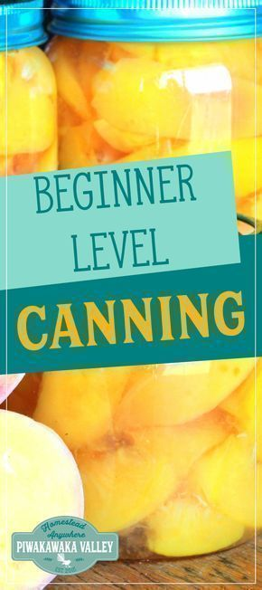 Beginner Overflow Canning Method For Preserving Stone Fruit This Includes Peaches Plums And Apricots Preserving Easy Canning Canning Recipes Survival Food