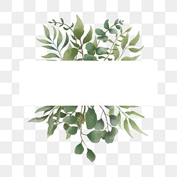 Elegant Watercolor Leaf Bouquet Frame Eucalyptus Clipart Watercolor Leaf Png And Vector With Transparent Background For Free Download Watercolor Leaves Watercolor Plants Watercolor