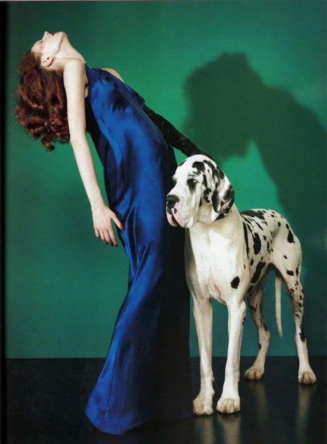 Be Stylish Walking Your Dog Budte Stilnymi Vo Vremya Progulki C