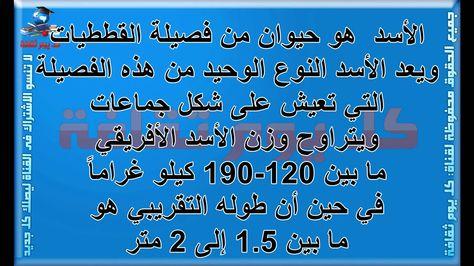 الأسد هل تعلم كم وزن وطول الاسد معلومات عن الحيوانات ثقافة عامة Calligraphy Youtube
