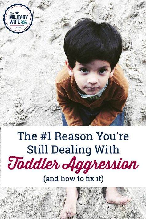 The #1 Reason You're Still Dealing With Toddler Aggression