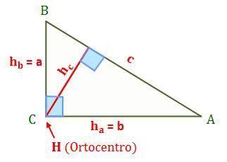 Triángulo Rectángulo Tipos De Triangulos Teorema De Pitagoras Triangulos