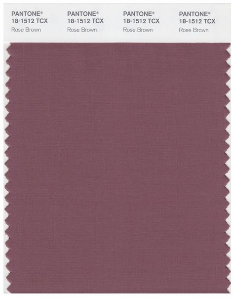 Pantone Smart 18-1512 TCX Color Swatch Card | Rose Brown | Magazine Cafe Store NYC USA