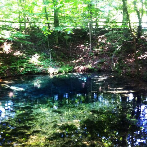 The blue hole at red clay state park favorite places near home the blue hole at red clay state park favorite places near home pinterest blue hole publicscrutiny Image collections
