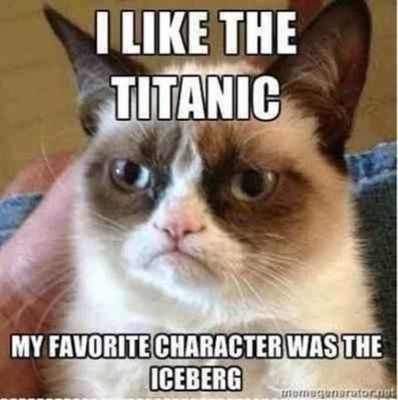 56 Ideas For Memes Humor Hilarious Grumpy Cat Myboys Cat Pet Funny Grumpy Cat Memes Grumpy Cat Quotes Funny Cat Memes