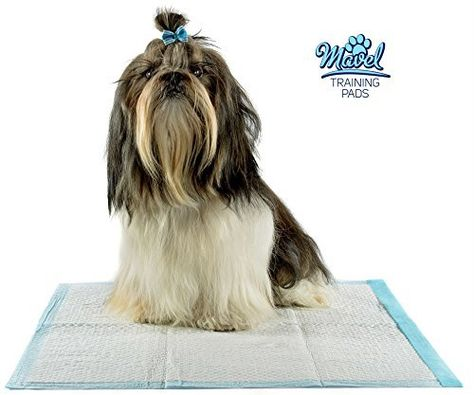 Housebreaking Training Pads for Puppies, Wee Wee Pad to Pee for Training Older Adult Dog or Cats, Dog Foot Pads or Pee Pad for Training your Puppy. Mavel 100 Satisfaction + 9.99$ eBook Read  more http://dogpoundspot.com/housebreaking-training-pads-for-puppies-wee-wee-pad-to-pee-for-training-older-adult-dog-or-cats-dog-foot-pads-or-pee-pad-for-training-your-puppy/  Visit http://dogpoundspot.com for more dog review products