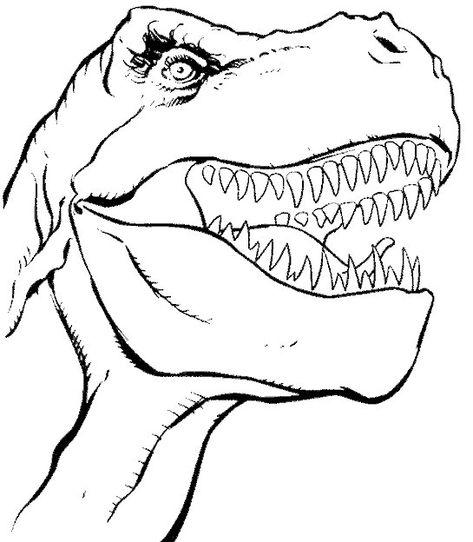 42 Disegni Di Dinosauri Da Colorare Dinosauri Libri Da Colorare