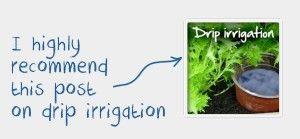 3d planung kostenlos webseite bild der fecbfffd water plants drip irrigation jpg