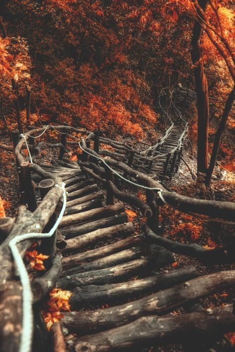 I want to walk down these stairs that promise change for the brave.