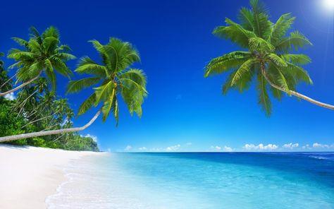 1474302676 Fond Ecran Plage De Reve Beach Wallpaper Jpg 1920 1200 Fond D Ecran Vacances Fond Ecran Plage Fond D Ecran Tropical