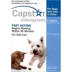 The Ultimate Guide How To Get Rid Of Fleas On Your Dog Dogs Dog Cat Dogs Online