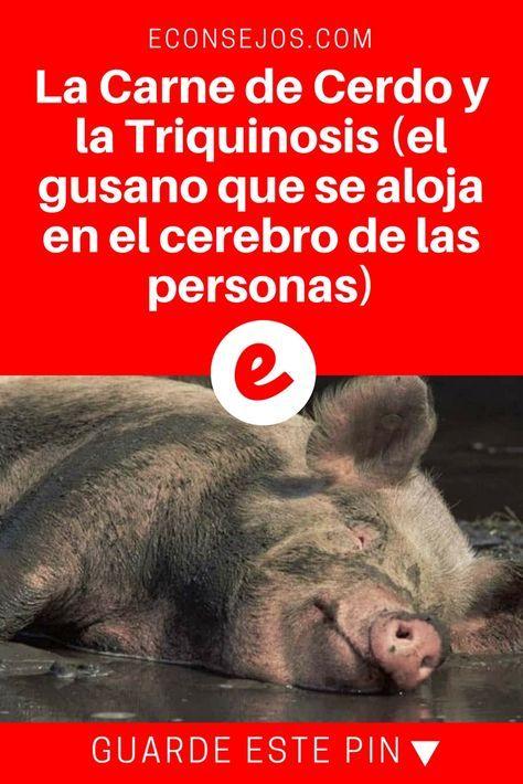 gusanos en la cabeza por comer cerdo y diabetes