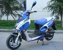 Peace 50cc Gas Scooter Moped Motobuys.com
