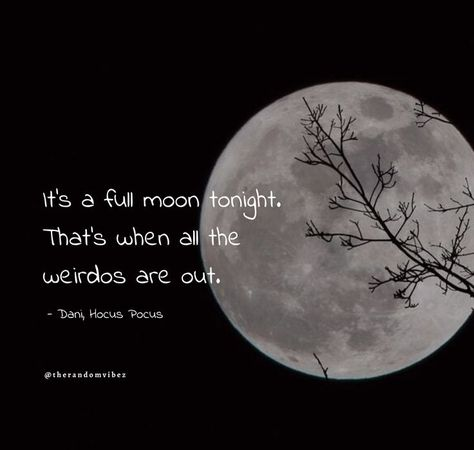 It's a full moon tonight. That's when all the weirdos are out. - Dani, Hocus Pocus #Halloweenquotes #Happyhalloweenquotes #Scaryhalloweenquotes #Disneyhalloweenquotes #Halloweencatchphrases #Coolhalloweenquotes #Halloweentagline #Halloweencaptions #Spookyhalloweenquotes #Funnyhalloweenquotes #Halloweenmeme #Happyhalloweenwishes #2021Halloween #Halloween2021quotes #Blackcathalloweenquotes #Halloweennightquotes #Scaryhalloweennightquotes #Halloweenevequotes #Halloweenpartyimages #therandomvibez