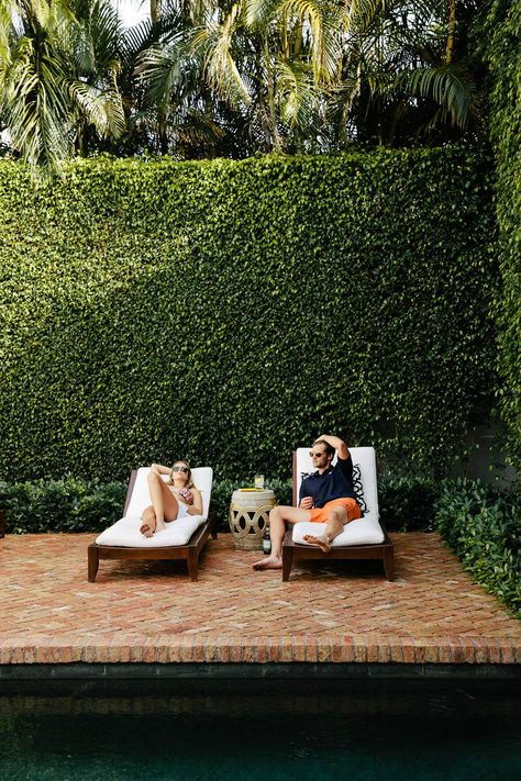 For privacy, ivy covered wall, under deck