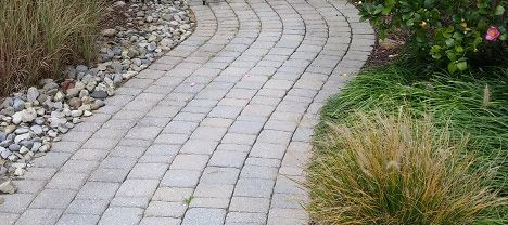 backyard landscaping ideas for dogs landscapingdesigns