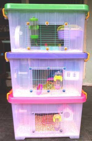 My Diy Hamster Cages Hamster Bin Cage Hamster Cages Hamster Diy