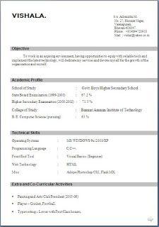 simple cv template sample template example ofbeautiful excellent professional curriculum vitae resume cv format with career objective job profi - Simple Cv Format